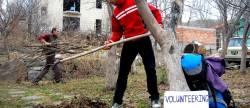 Buzzinga! I'm a Volunteer